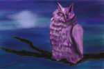 The Owl in the Night by Alixandra Mullins
