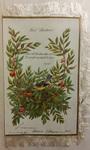 Hail! Christmas! Card by Leila Virginia Turner
